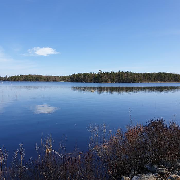 Nära-vatten-vandring - 6 km
