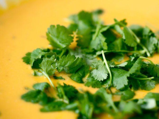 Jolien kotikeittiössä – veikeämpää vegesafkaa osa 4/6: kurpitsa-bataatti-keitto