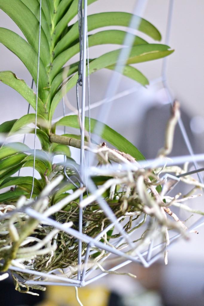 orkidea_interiordesign_decoration_yellowmood_hannamarirahkonen_diy_flowers 7