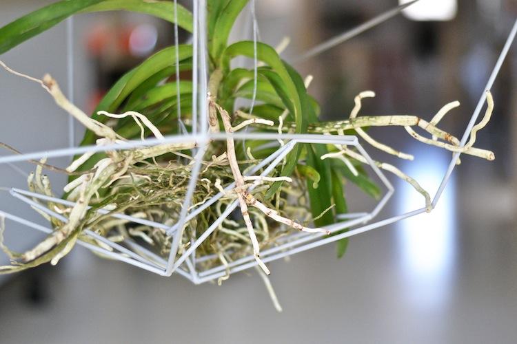 orkidea_interiordesign_decoration_yellowmood_hannamarirahkonen_diy_flowers 2