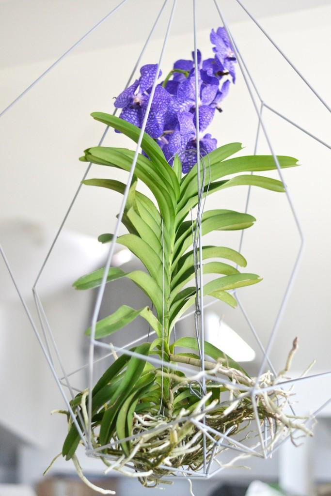 orkidea_interiordesign_decoration_yellowmood_hannamarirahkonen_diy_flowers 1