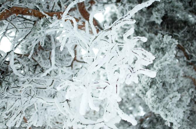 yellowmood_winter_rovaniemi_ounasvaara_skyhotelli_snow3