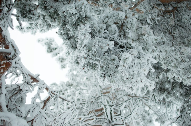 yellowmood_winter_rovaniemi_ounasvaara_skyhotelli_snow2