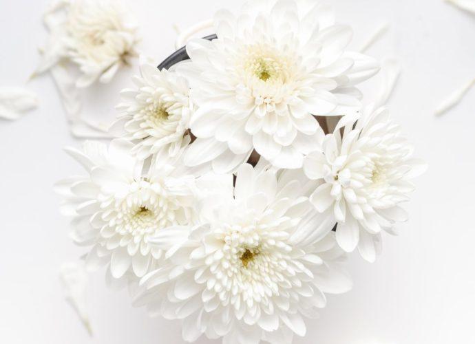Jolie Spa valkoiset kukkaset