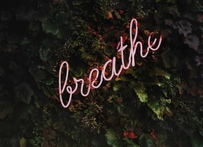 Meditaatio on ilmainen lääke