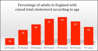 Raised cholesterol by age in England