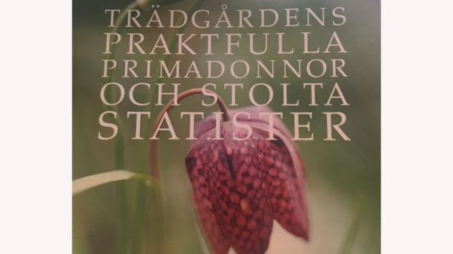 Tradgardens-praktfulla