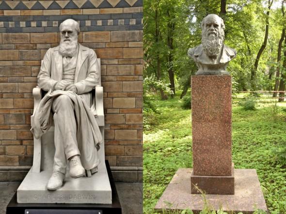 Памятник Дарвину в Музее естествознания в Лондоне (слева) и бюст в саду Института экспериментальной медицины в Санкт-Петербурге