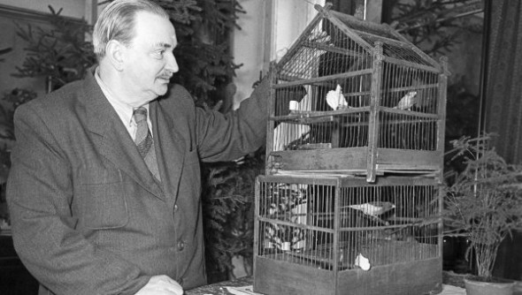 Везде и всюду Виталий Валентинович наблюдал за жизнью птиц. Где бы ни жил, составлял список местных птиц. Безошибочно узнавал их по голосам и по манере поведения