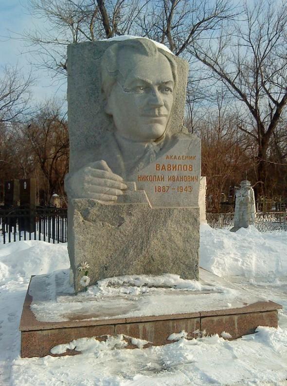 Памятник Н. Вавилову на Вознесенском кладбище в Саратове