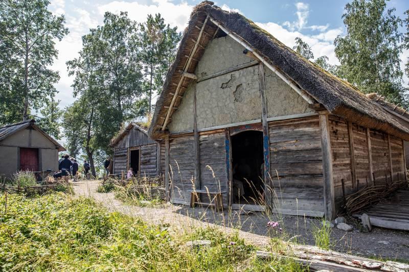 Village Viking de Birka