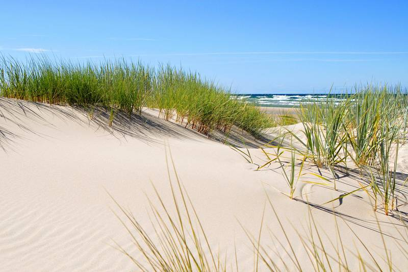 Beach on Gotland